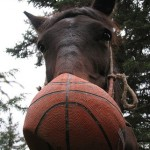 Ten Great Basketball Shots to Use in Horse