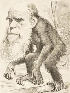 darwin ape 225x300