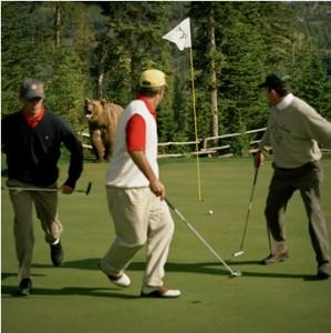 golf bear 2 299x300