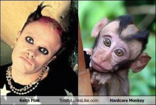 keith flint hardcore monkey