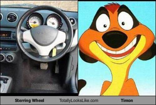 steering wheel timon