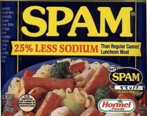 spam less salt 300x237