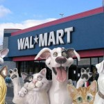 Bring Your Pet to Walmart Day : 5/9/2009