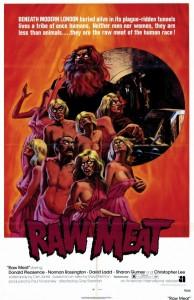 raw meat 194x300