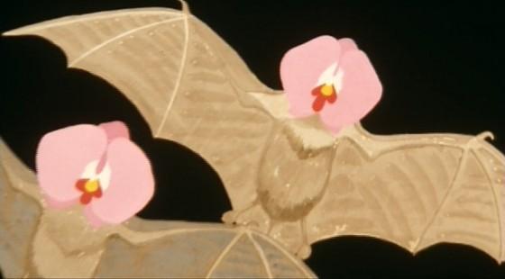 batflowers 560x310