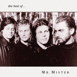 MrMister TheBestOf