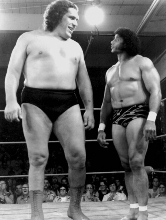 andre the giant 560x740