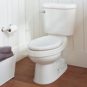 toilet 300x300