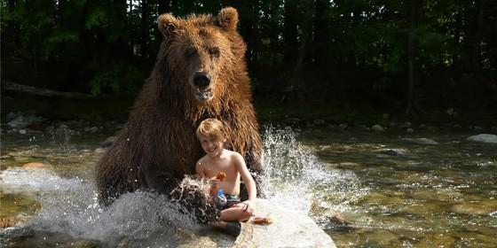 Bear Attack 560x280