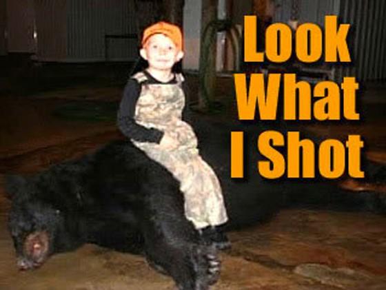 Kid Bear 560x421