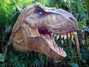tyrannosaurus rex 300x225