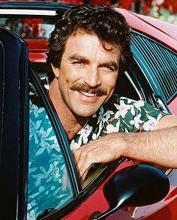 250px Magnumtomselleck