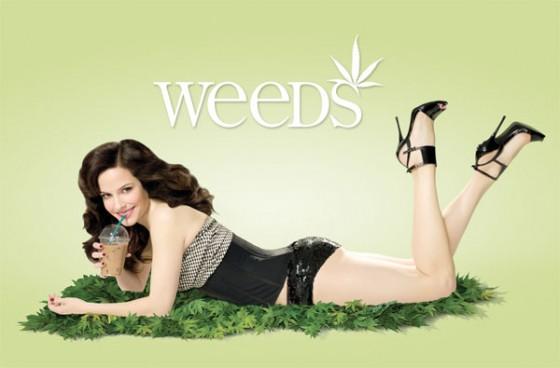 weeds season 5 560x368