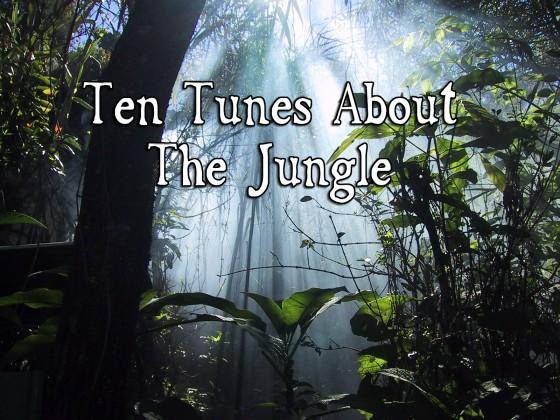Jungle 560x420