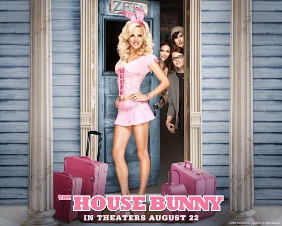 house bunny1 560x448
