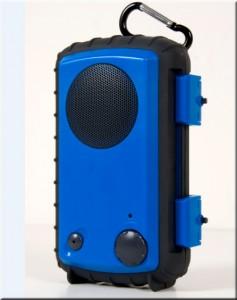 blue one 237x300
