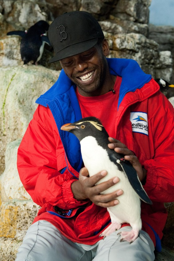 Randy Moss Penguin 560x841