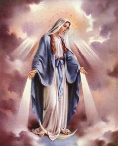 Hail Mary 242x300