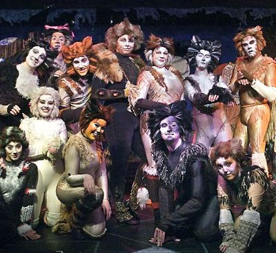 1982 cats