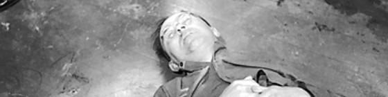 Himmler Dead e1291689472467 560x140