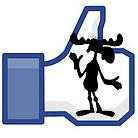 Predicting the Next Five Facebook Fads