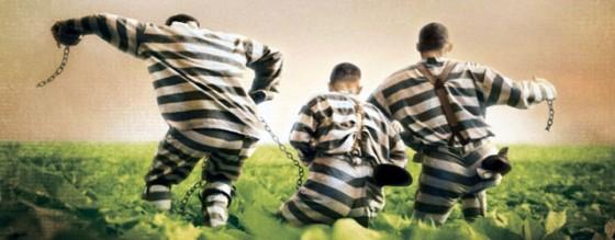 Prison Escape 560x218