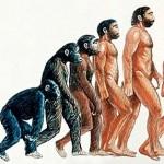Six Ways Humans Will Evolve