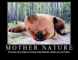 fedor vs bear 300x229