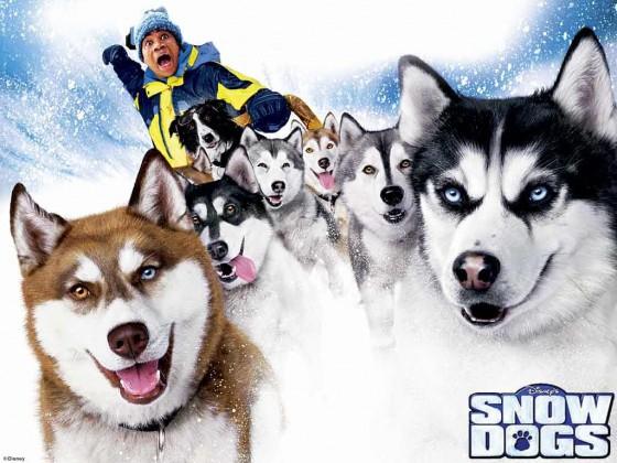 snow dogs 560x420