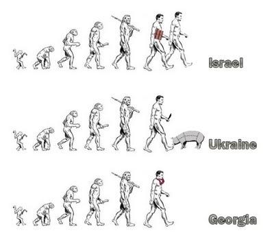 Evolution Funny 29