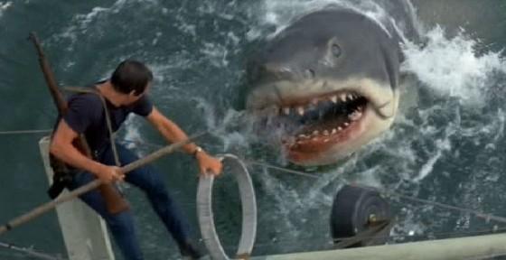 jaws shark 560x288