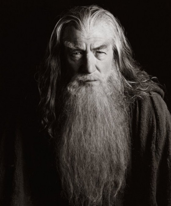 Gandalf beard 560x674