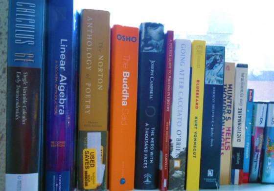 Chris Wang Books 560x391