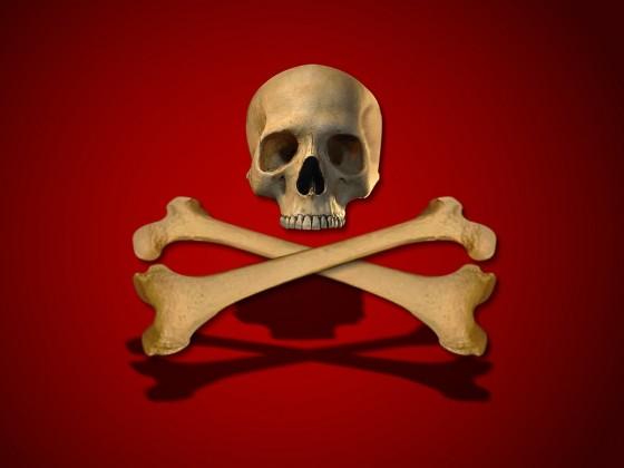 skull+crossbones+wallpaper 2 560x420