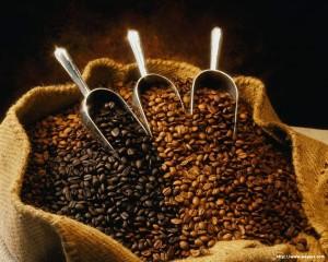 Coffee Beans 300x240