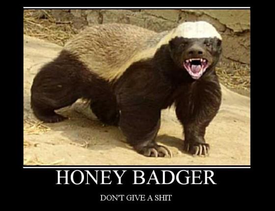 honey badger 560x430