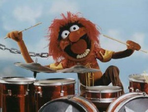 muppet animal 300x228