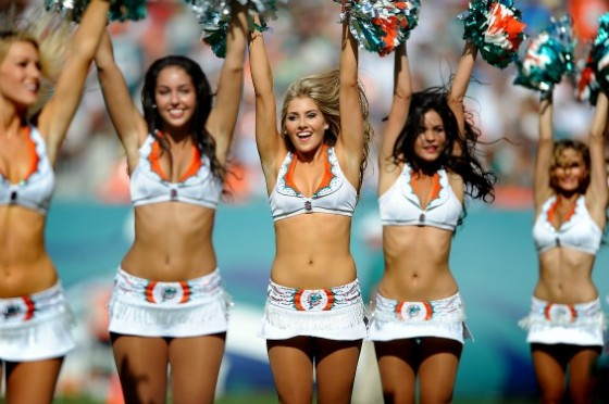 dolphins cheer 560x372