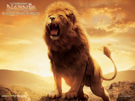 Aslan Lion 2 The Chronicles of Narnia Wallpaper 560x420
