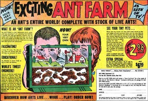 vintagecomicbookadantfarm