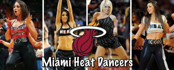 Miami Heat 560x227