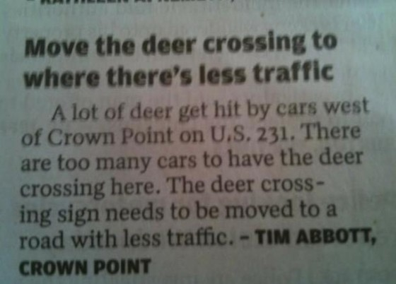 deer header 560x402