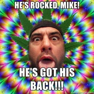 Joe Rogan meme 300x300
