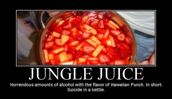 Jungle Juice Poster 560x324