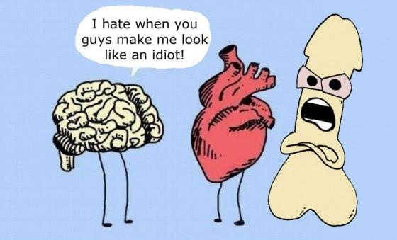 brain 560x339
