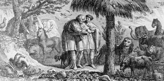 Aristotle And Animals 560x277