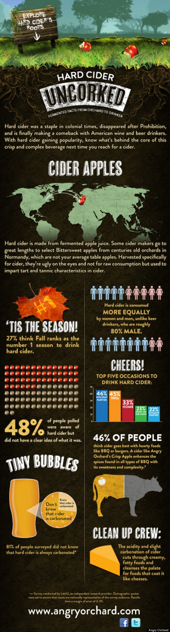 Hard Cider INFOGRAPHIC 560x2076