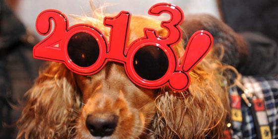 New Years Glasses 2013
