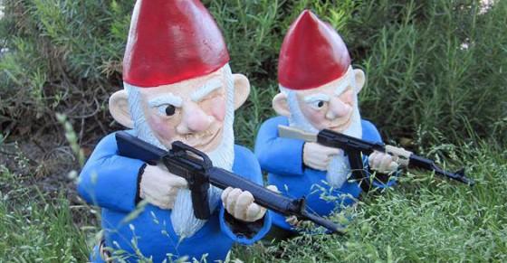 NRA Gnomes 560x291
