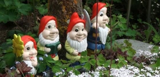 disney gnome phlox e1360434442245 560x271